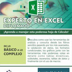 Experto en Excel 2018