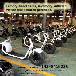 citycoco harley electric bike