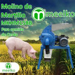 5. Cerdo