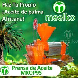 01-MKOP95-Banner-esp