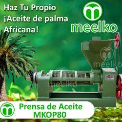 01-MKOP80-Banner-esp